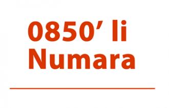 0850 Numara Nedir ve Nasıl Alınır?