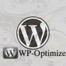 WP-Optimize Eklentisi