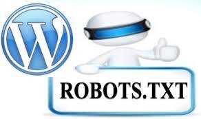 WordPress robots.txt Kullanımı ve Güvenlik Önlemleri
